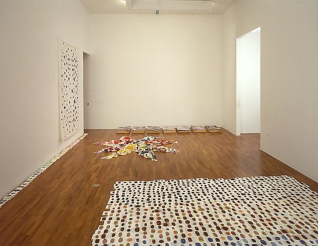 Polly Apfelbaum  Installation view:  Museum of Modern Art, New York.  'Sense and Sensibility: Women Artists and Minimalism in the Nineties,' curated by Lynn Zelevansky, June 16 - September 11, 1994.