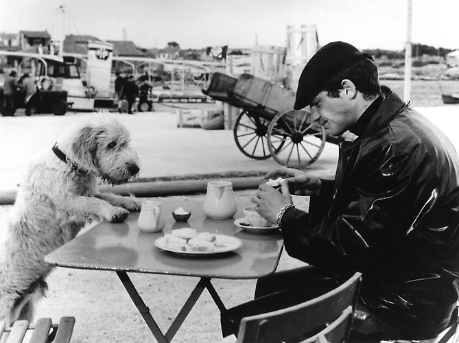Lunch off-set with Jean-Paul Belmondo and dog (Peau De Banane) 1963 gelatin silver print