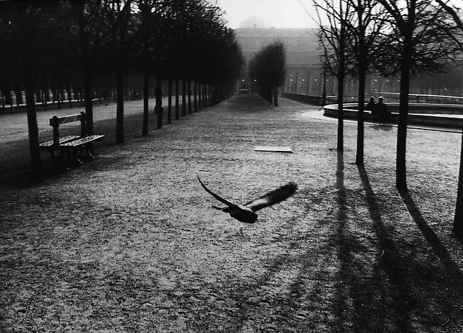 Palais Royal, Paris, France 1988 gelatin silver print