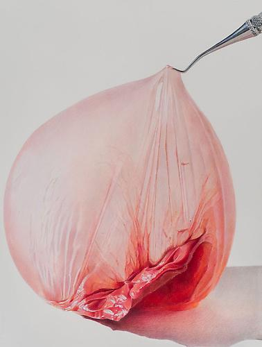 Pulled Peach, 2013 colored pencil on paper 16 x 12 inches