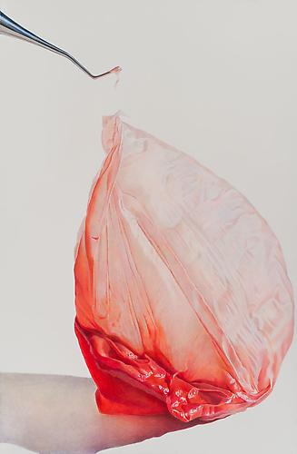 Pulled Persimmon, 2013 colored pencil on paper 40 x 26 inches