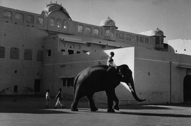 In front of the Jaipur Palace, India,  1956 Gelatin Silver Print