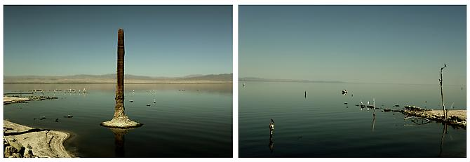 Salton Sea: Northshore, 2005 Archival pigment prints mounted on non-reflective plexiglass Edition of 5 Diptych: 60 x 40 inches