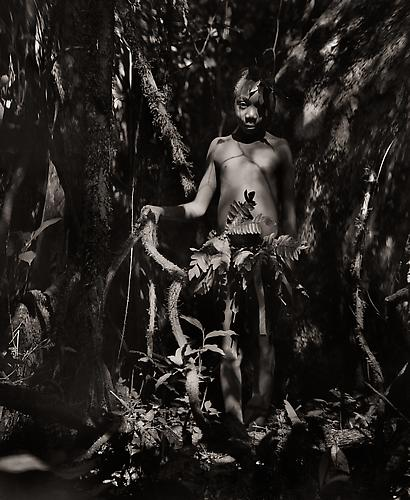Source Efe Boy, the Ituri Rain Forest, Congo Basin, Zaire 1989 platinum/palladium print
