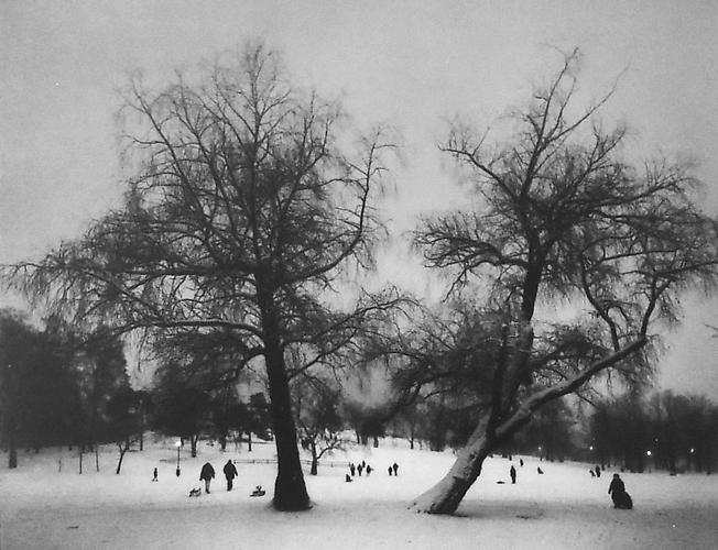 Stora Allen, Brunnsparken-Iso, Puistotie, Kaviopuisto, Helsinki (Two Trees, Children Playing in Snow) 1997 Gelatin Silver Print