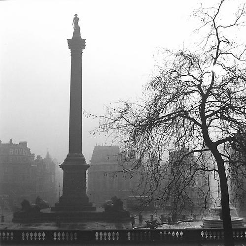 London, Trafalgar Square (Statue and Tree) 1952 gelatin silver print