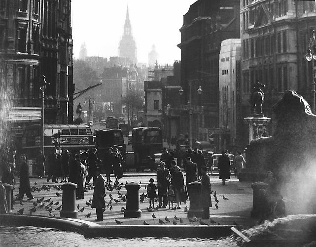 London, From Trafalgar Square to Whitehall & Parliament 1953 gelatin silver print