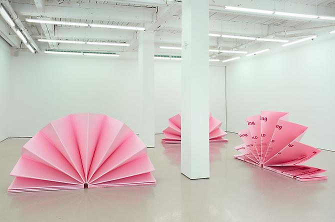 Tony Feher  Installation View: Blossom, D'Amelio Terras, New York, NY. November 7 - December 23, 2009.