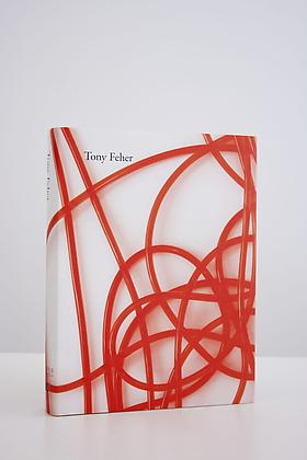 Tony Feher Publication Release of Monograph Book