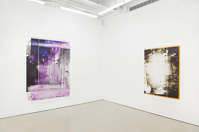Tamar Halpern  Installation View: D'Amelio Terras, New York. September 8 - October 15, 2011.