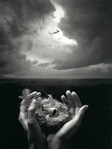 Free Spirit