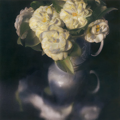 White Pitcher of Camellias 1996 Hand painted gelatin silver print