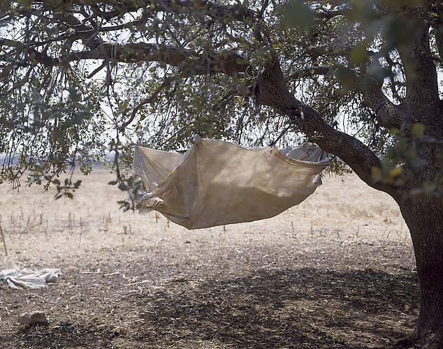 Sharon Ya'ari,  Hammock , 2001 C-print 45 x 52 inches / 114 x 132 cm Edition of 6