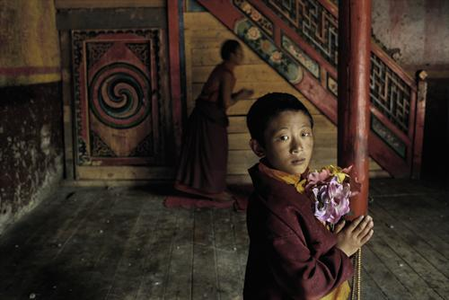 Young monk with flowers, Larung Gar, Kham, Tibet 2000 C-type print on Fuji Crystal Archive paper