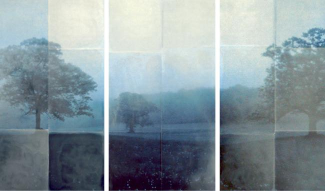 Am I Blue, 2010 encaustic on archival print mounted on wood 36 x 62 inches (triptych)