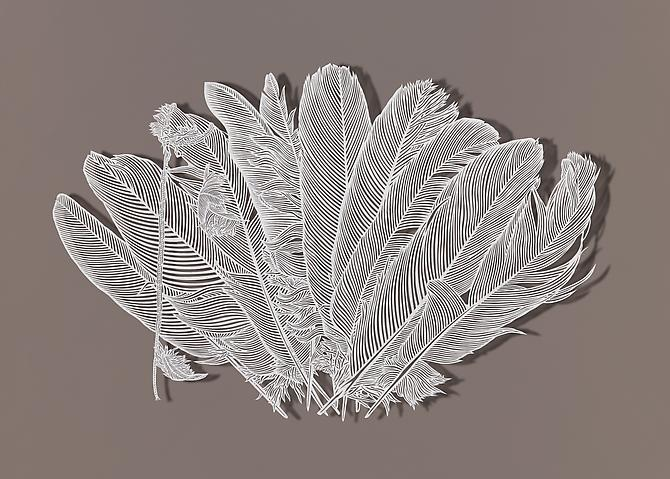Trimming Feathers, 2012 Cut paper, Chinese xuan (rice) paper on silk 25 x 16.5 inches