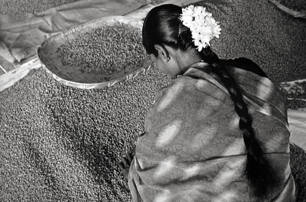 India, Woman with Flowers in her Hair 2003 gelatin silver print