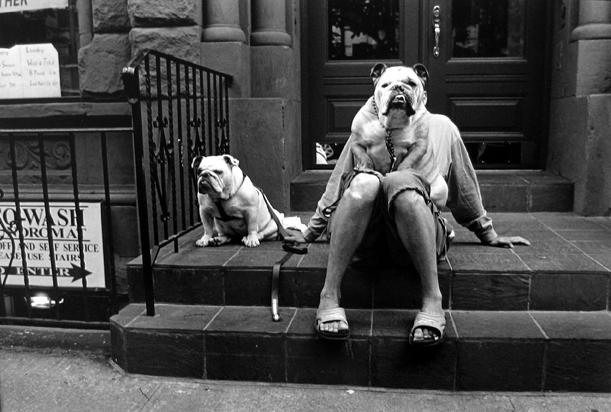New York [man with bulldog] 2000