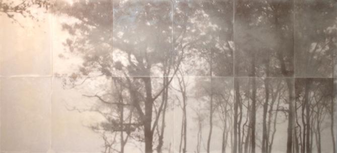 Champagne, 2011  encaustic on archival print mounted on wood 36 x 80 inches