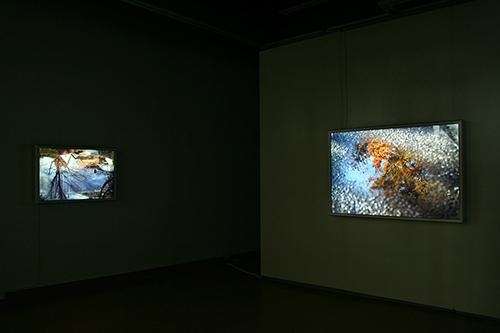 CHERYL PAGUREK | FLOW | INSTALLATION VIEW | OTTAWA CITY HALL ART GALLERY | 2008