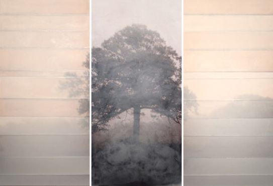 In a Meadow, 2010 encaustic on archival print mounted on wood 49 x 74 inches (triptych)