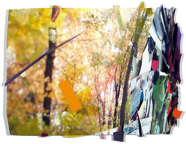 Leafy Mix, 2012 Gouache, archival inkjet print, collage and paper 16 x 24 inches