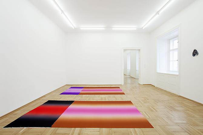 "Polly Apfelbaum  Installation view: Galerie Nacht St. Stephan, Vienna, Austria. ""Planiverse"" March 16 - April 16, 2012"