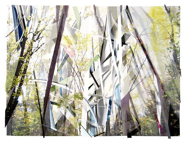 Scrap Paper and Woods 3, 2012 Archival inkjet print, paper and collage 23 x 31.5 inches