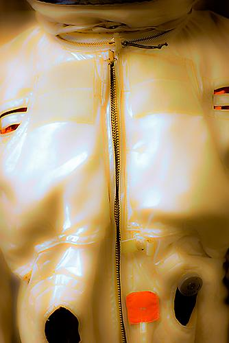Skin Job, 2010 from 'Aerospace' pigment print