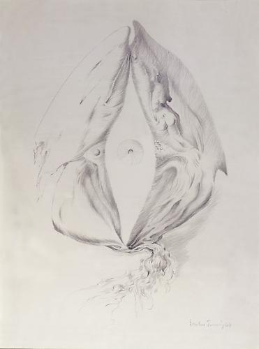 Early Eye , 1948 Pencil on paper, 14 x 10 in. Wadsworth Antheneum Museum of Art, Hartford, CT