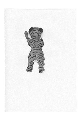Untitled (Tiger), 2003, ballpoint on paper, 8 x 5.55 inches