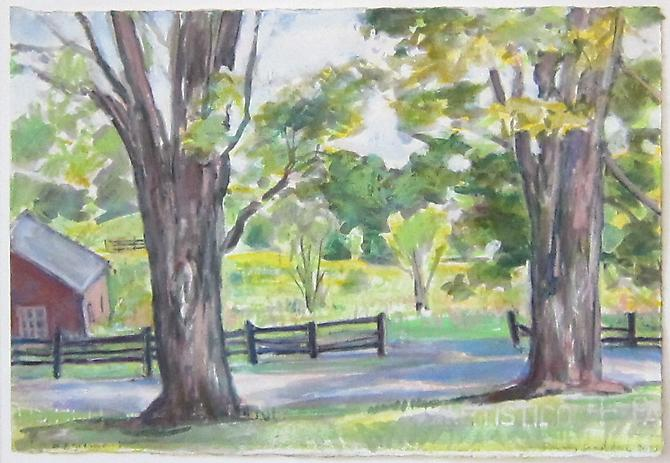 View from the porch (Two Maples), 2010 Oil pastel stick on Arches paper 9 1/4 x 13 1/2 inches