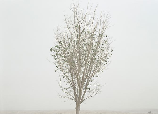 Untitled , 2010 Archival Pigment Print 20 x 26 inches 50 x 66 cm