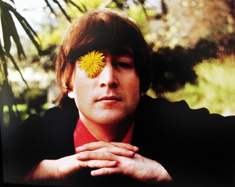 Robert Whitaker, John with Flower, Weybridge 1965 Lightjet digital print [color]