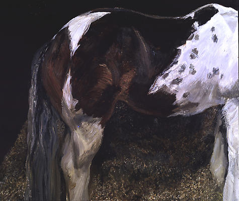 "Lucian Freud, ""Skewbald Mare,"" 2004 Oil on canvas, 40 3/16 x 48 1/8 inches Image"