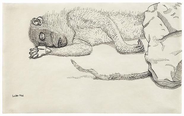 "Lucian Freud, ""Dead Monkey"" 1944 Ink on paper, 7 7/8 x 12 3/4 in. (20 x 32.5 cm) Private Collection © The Lucian Freud Archive  Photo © The Lucian Freud Archive Image"