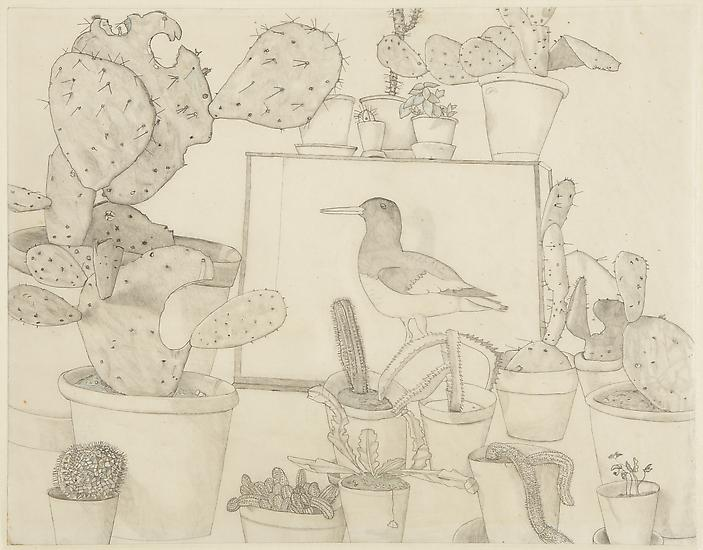"Lucian Freud, ""Cacti and Stuffed Bird"" 1943 Pencil and colored crayon on paper 16 3/4 x 21 1/2 inches (42.6 x 54.6 cm) Acquavella Galleries © The Lucian Freud Archive"