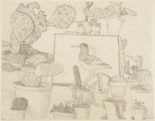 "Lucian Freud, ""Cacti and Stuffed Bird,"" 1943 Pencil and colored crayon on paper 16 3/4 x 21 1/2 inches Art © The Lucian Freud Archive / Bridgeman Images Image"
