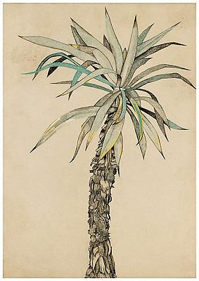 "Lucian Freud, ""Palm Tree"" 1942 Pastel, chalk and ink on paper 24 1/4 x 17 1/8 inches (61.5 x 43.5 cm) Freud Museum, London © The Lucian Freud Archive Photo © Lucian Freud Archive Image"