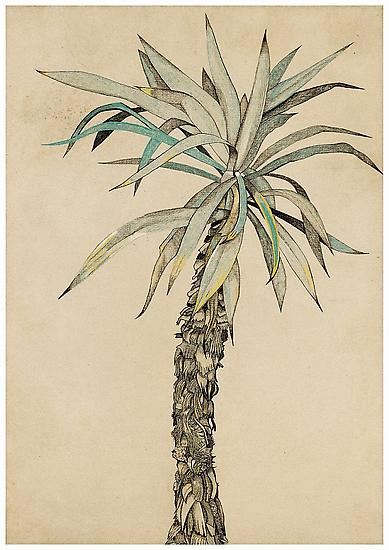 "Lucian Freud, ""Palm Tree"" 1942 Pastel, chalk and ink on paper 24 1/4 x 17 1/8 inches (61.5 x 43.5 cm) Freud Museum, London © The Lucian Freud Archive Photo © Lucian Freud Archive"