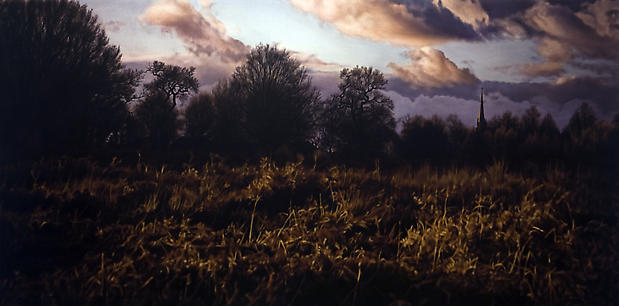 """Damian Loeb, """"Straw Dogs,"""" 2008 Oil on linen, 36 x 84 inches Image"""