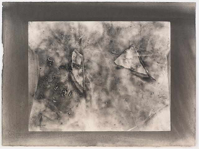 Organic Series #5 (1974) Toner on paper 11h x 15w in (27.94h x 38.1w cm)