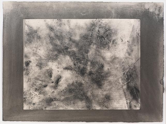 Organic Series #7 (1974) Toner on paper 11h x 15w in (27.94h x 38.1w cm)
