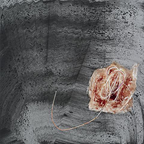 Omphalos (2013) Acrylic on canvas 64h x 64w in (162.6h x 162.6w cm)