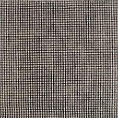 Jack Whitten DNA II (1979) Acrylic on canvas; 42h x 42w in (106.68h x 106.68w cm)