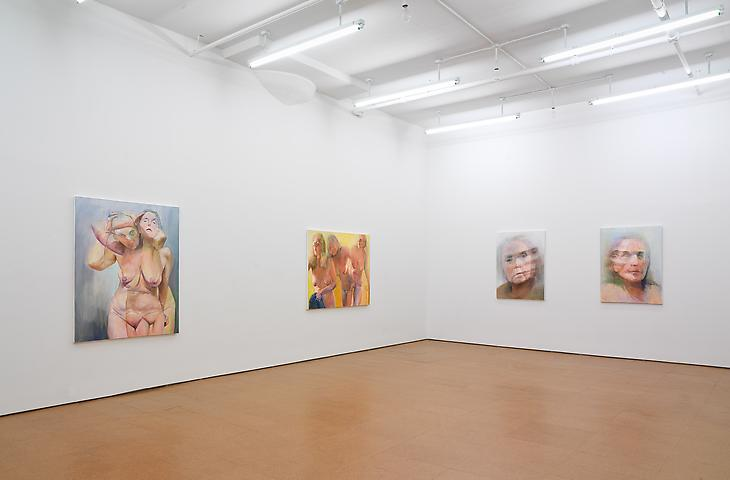 Joan Semmel Installation view, Alexander Gray Associates (2011)