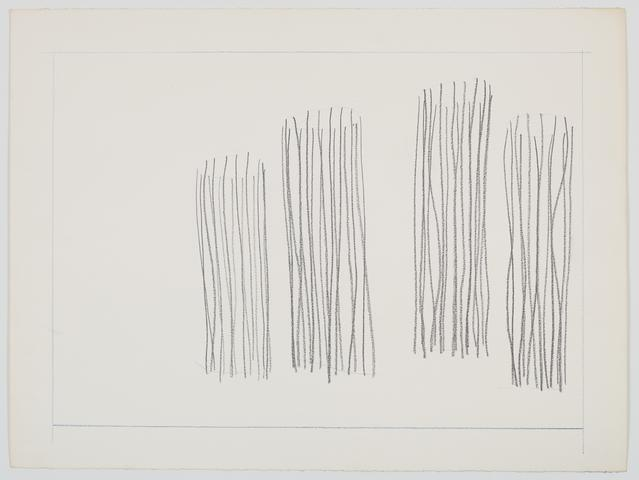 Untitled barbed wire study (1970) Graphite on paper 18.13h x 24.13w in (46.1h x 61.3w cm)