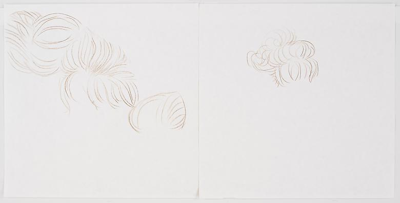 Sarah (Buns)  (2008) Graphite and watercolor on paper  Diptych; 12h x 12w in (30.48h x 30.48w cm)