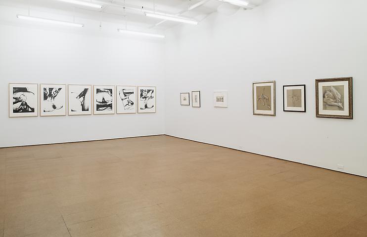 Cadmus, Steers, Warhol Installation view, Alexander Gray Associates (2012)