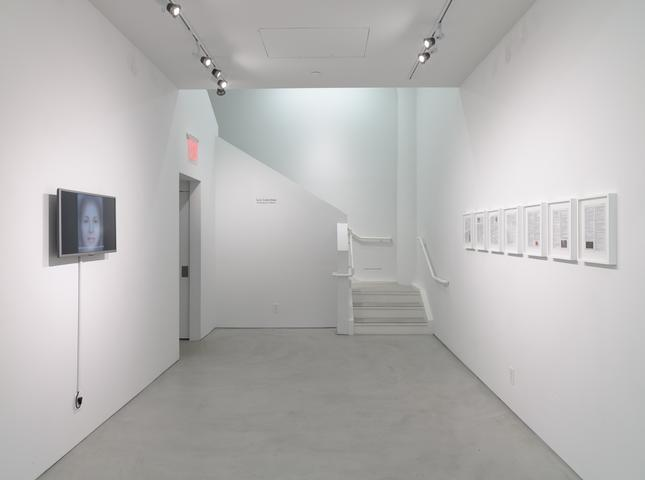Luis Camnitzer: The Mediocrity of Beauty, Installation View, Alexander Gray Associates (2015)